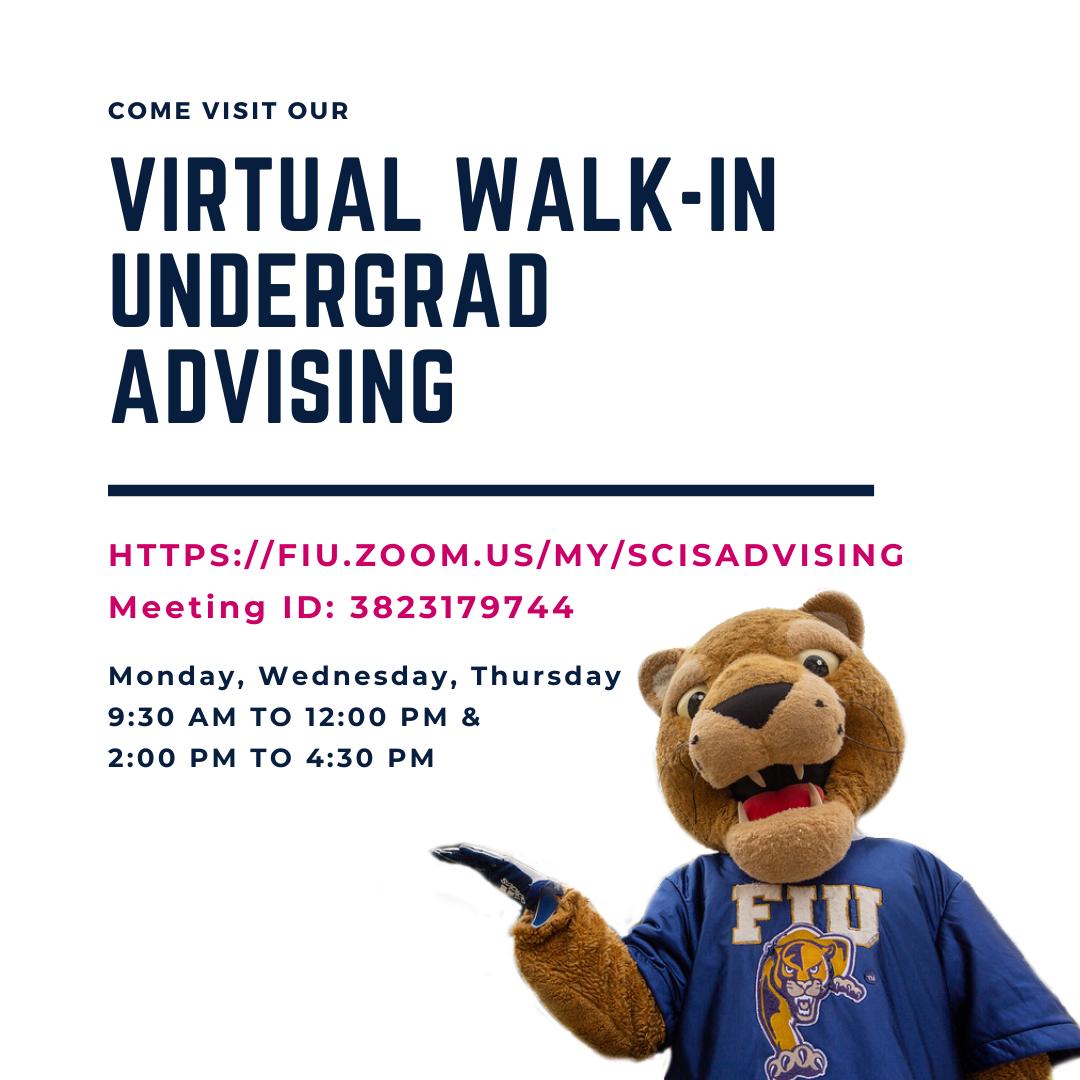 Virtual Walk-in Undergraduate Advising